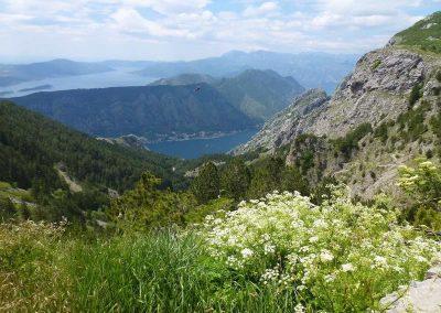 26.05.17 | Auf Entdeckungstour in Montenegro