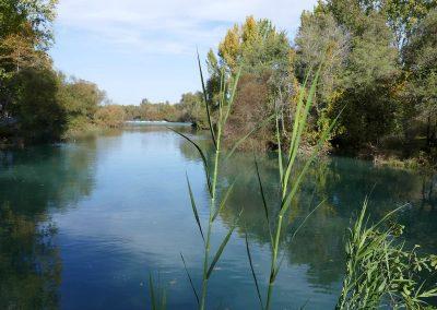 Manavgat-Fluss - fast wie ander Reuss