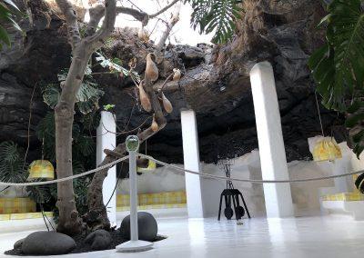 Ein Erlebnis - das Museum von César Manrique